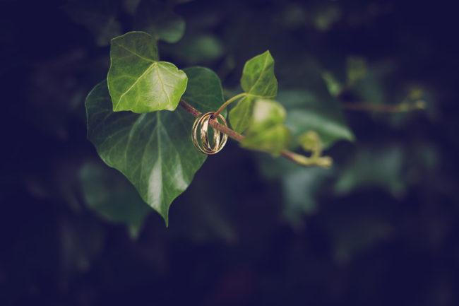 Outdoor Fotoshooting Natur